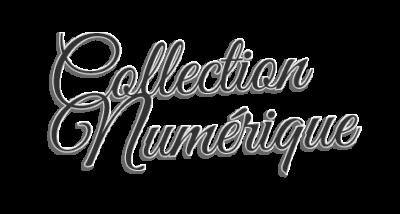 titre-collection-numerique